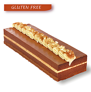 Gluten Free - Chocolate Muscat Marquise Log